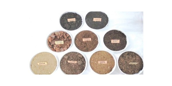 Do you know what is the best soil to use in your garden? How to find the most suitable