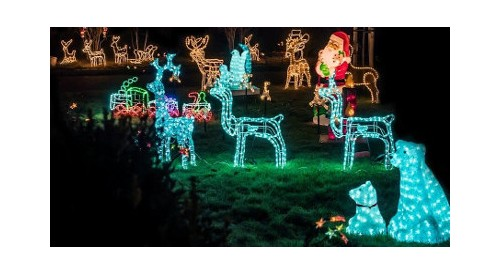 How to decorate your garden for Christmas: 5 ideas (with examples)